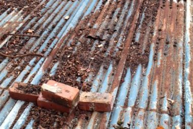 rusty tin roof in need of repair