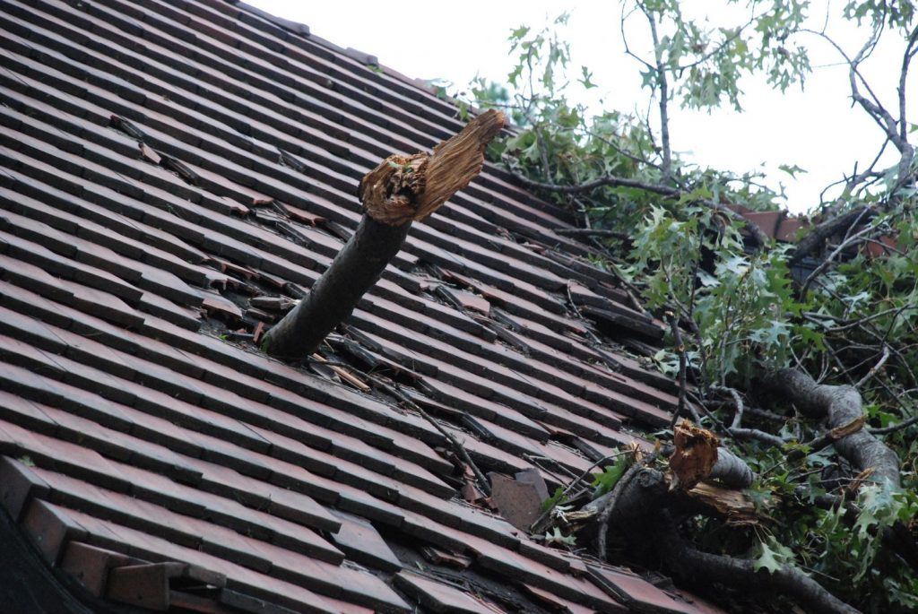Storm Damage Assessment The Roof Dentist