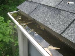 dirty roof gutters